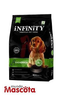 Infinity Cachorro puppy Mundo Mascota Moreno