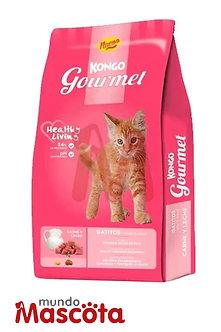Kongo kitten gatito Mundo Mascota Moreno