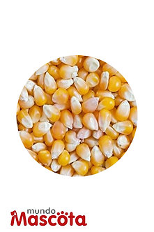 Maiz entero cereales Mundo Mascota Moreno