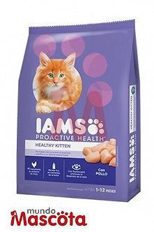 IAMS gatito kitten Mundo Mascota Moreno