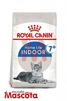 Royal Canin indoor 7+ cat gato adulto Mundo Mascota Moreno