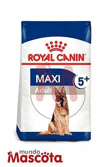 Royal Canin perro adulto maxi  5+ Mundo Mascota Moreno