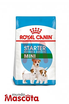 Royal Canin starter mini Mundo Mascota Moreno
