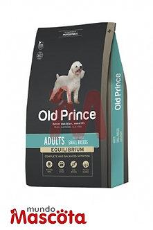 old prince adulto raza pequeña mundo mascota moreno