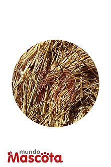 Fardo cereales alimento Mundo Mascota Moreno