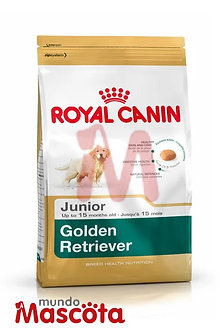 Royal Canin golden retriever cachorro junior puppy Mundo Mascota Moreno