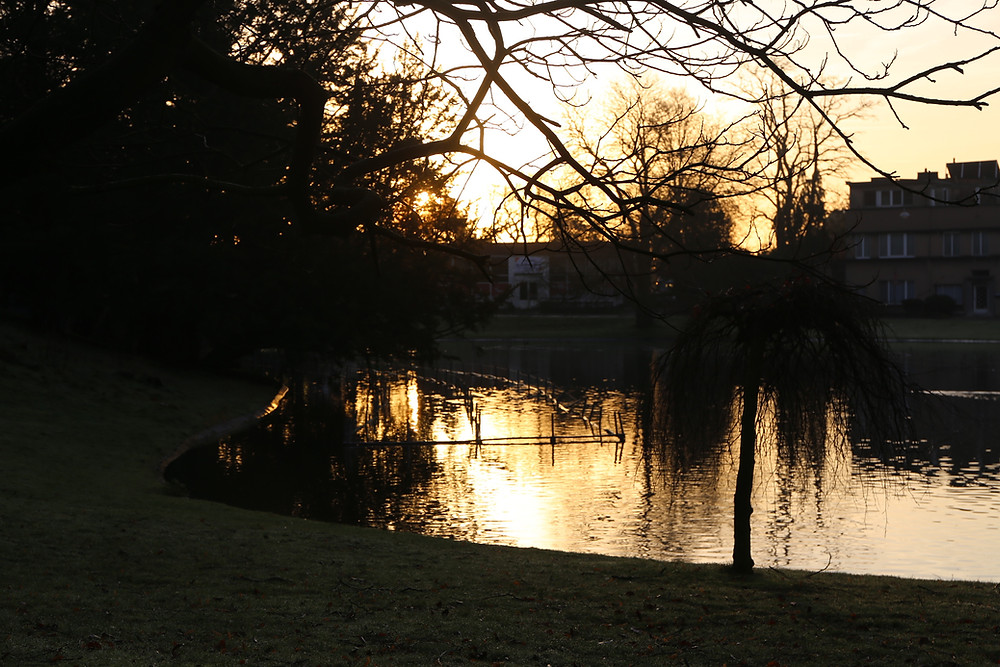 A winter morning in Citadel Park. An important green space landmark, loved dearly by the citizens of Ghent.