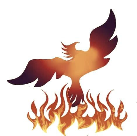 phoenix%20image_edited.jpg