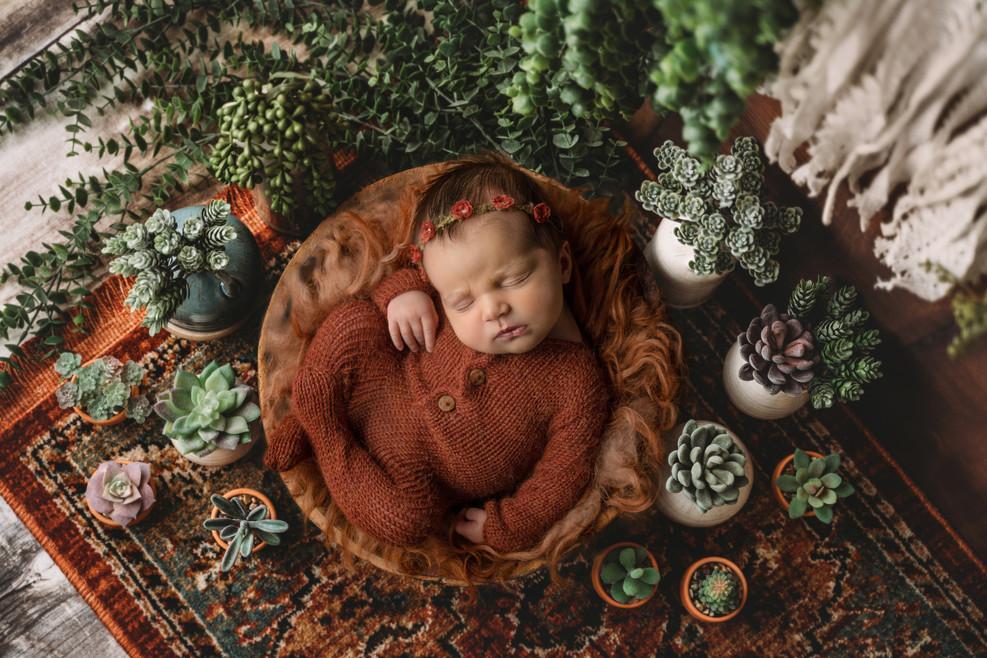 Alisha Cory Photography - Mount Pleasant