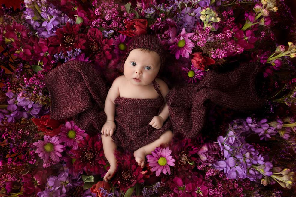 Alisha Cory PhotographyAlisha-Cory-Photo