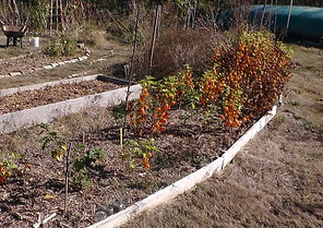 permaculture poitiers 79