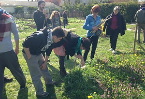 permaculture stage orleans jardinage