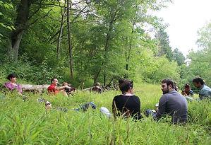 permaculture stage bordeaux jardinage