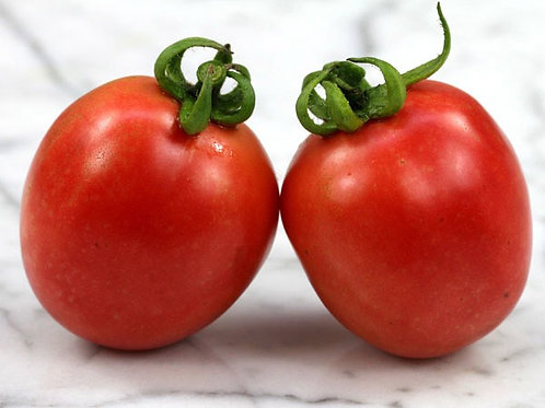 Lunch Box Tomato - Individual