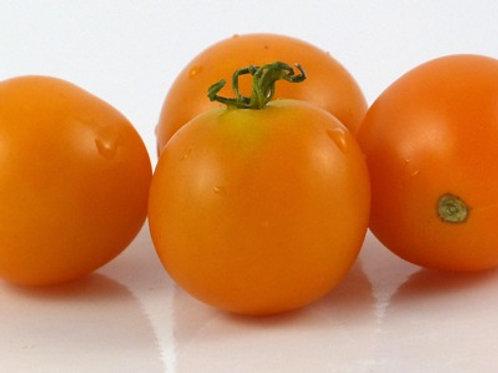 Sweet Orange Tomato