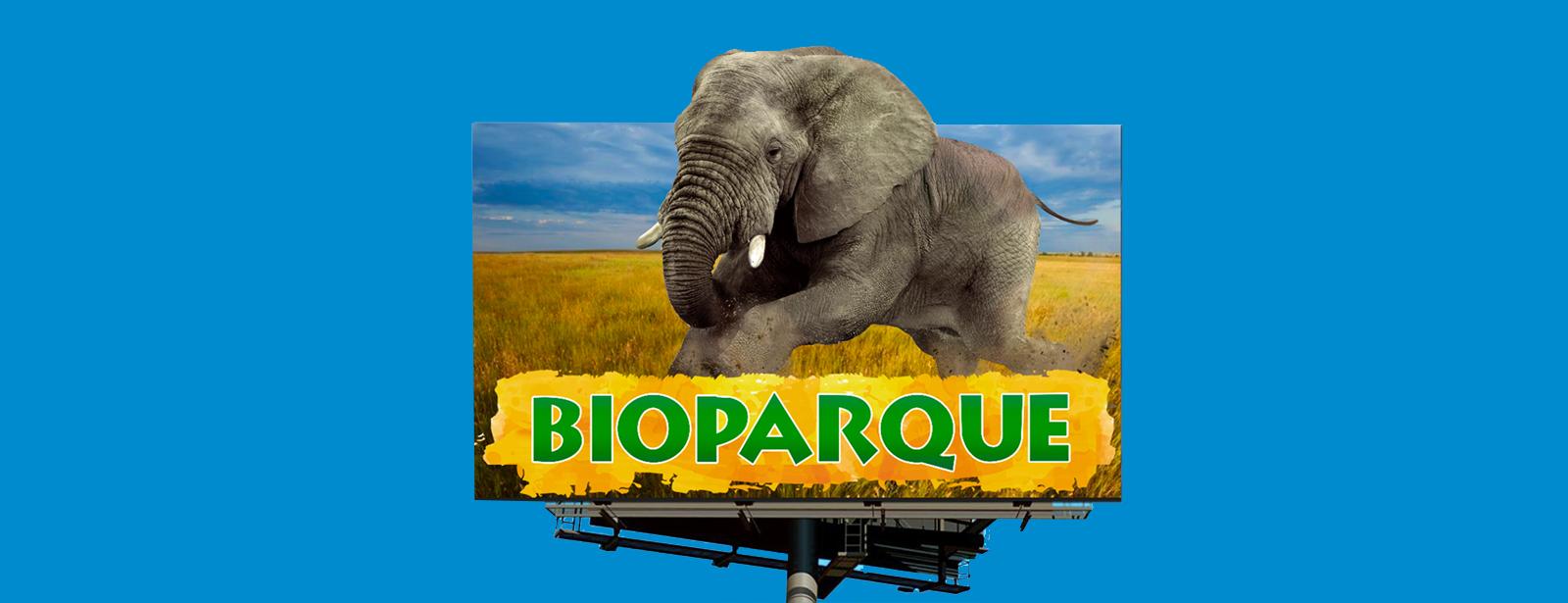 campaña bioparque agencia de publicidad