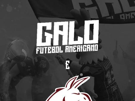 Sudeste europeu: Galo FA fará treino em conjunto com equipe da Romênia