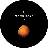 membranes circle ProfilePictureMaker-1.png