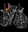 raymonbike.png