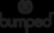 logo_Bumped_s_onLight.png