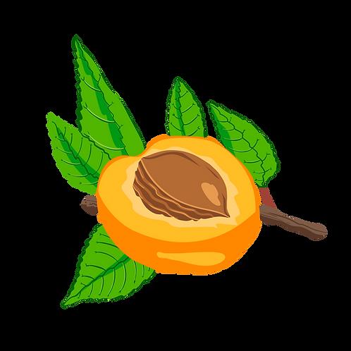 Huile d'abricot vierge biologique