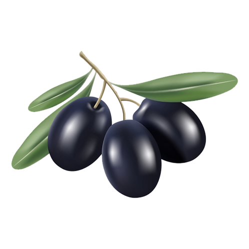 Huile d'olive vierge extra biologique 1000 ml