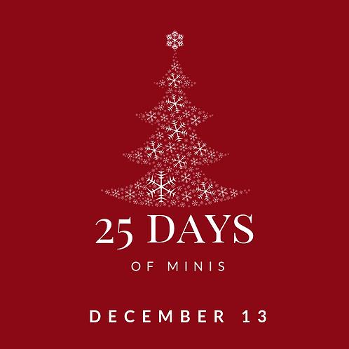Dec 13 - 25 days of minis