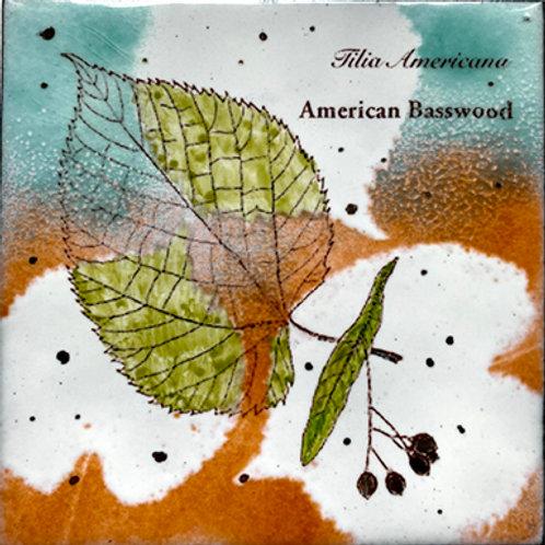 American Basswood Enamel Wall Tile