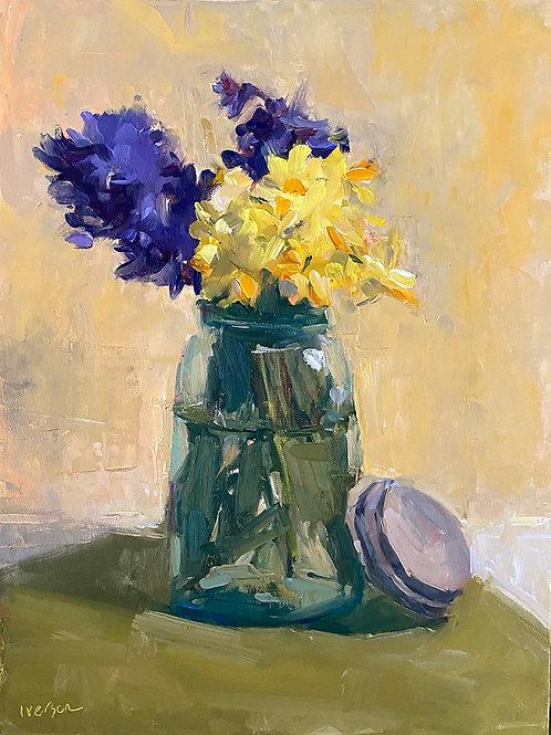 Hyacinths & Daffs