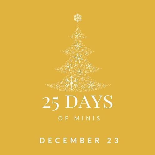 Dec 23 - 25 days of minis