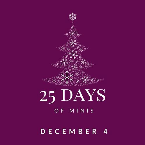 Dec 4 - 25 days of minis