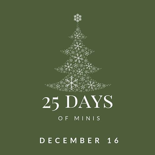 Dec 16 - 25 days of minis