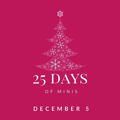 Dec 5 - 25 days of minis