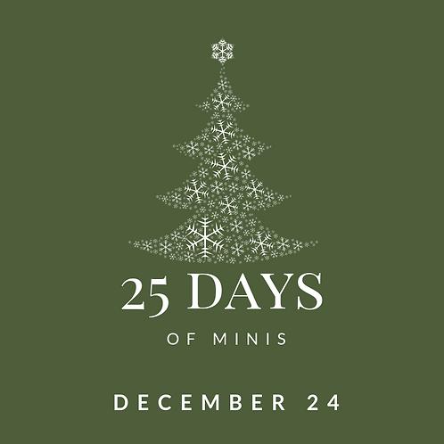 Dec 24 - 25 days of minis