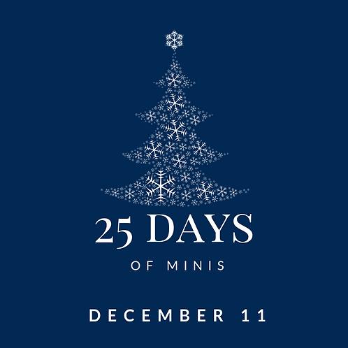 Dec 11 - 25 days of minis