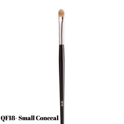 Small Conceal