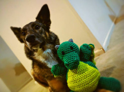 Rigby and her sidekick by Dan Cole
