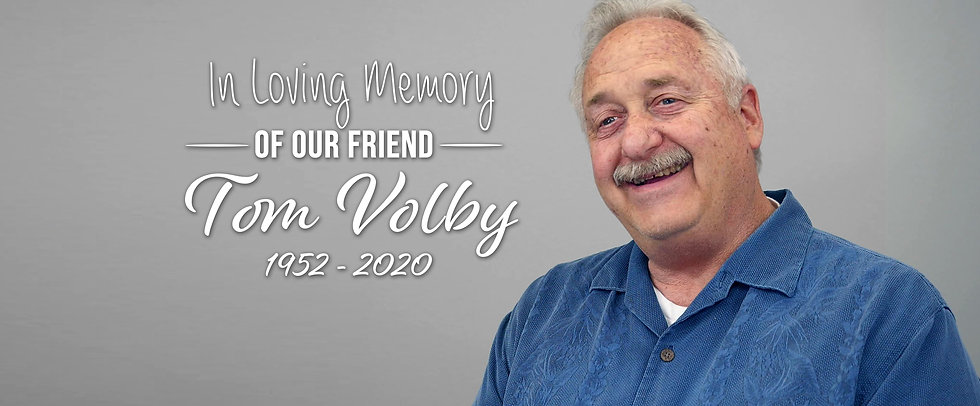 volby TV website.jpg