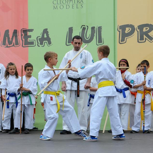 Deutsche Kyokushin Karate & Budo Vereinigung e.V.