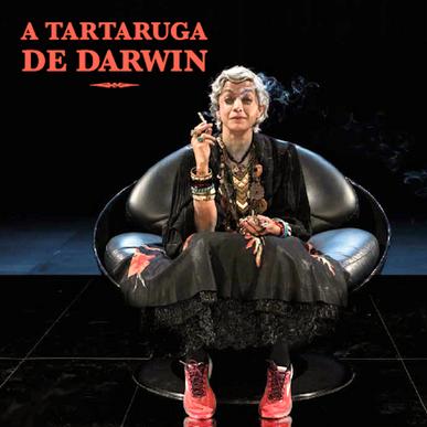A Tartaruga de Darwin (teatro)
