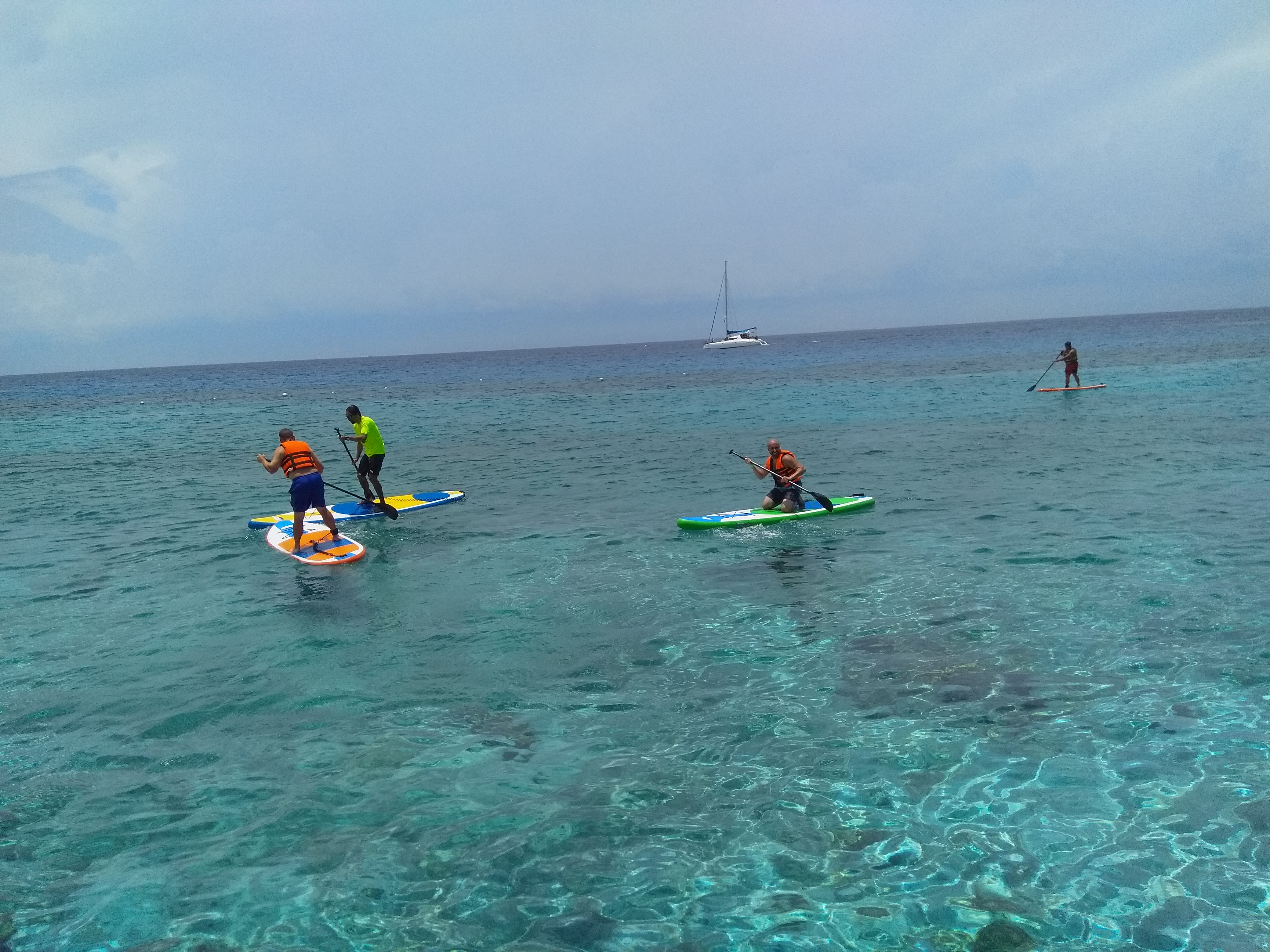 Paddle Board water sports