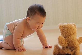 赤ちゃんのコース