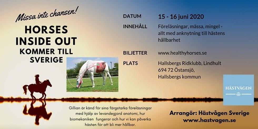 Horses Inside Out at Hallsbergs Ridklubb's facility in Östansjö, Sweden