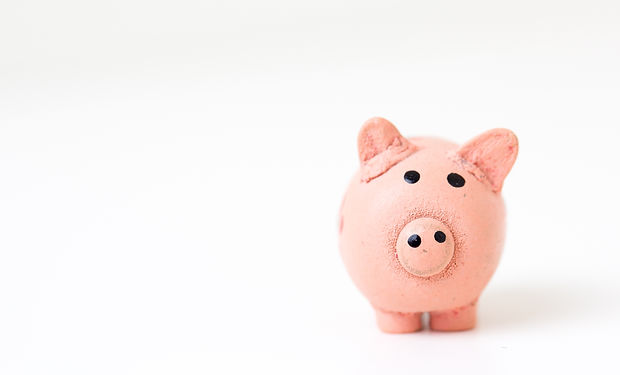 Pink Piggy Bank on a Blank Background