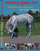 Pilates for horses, equine exercises to improve core strength and stability, flexibility, back pain, coordination, posture, range of movement, mobility fascia, myofascial release
