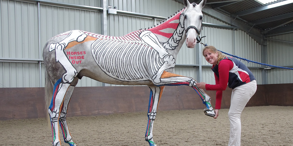 Online Painted Horse Lecture Demonstration