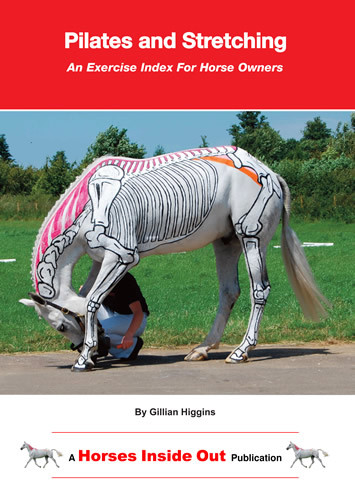 Pilates for horses, in-hand exercises, core stability, flexibility, suppleness, back health,