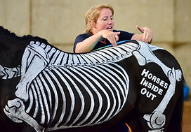 Gillian Higgins explaining equine lumbosacral pain, sacroiliac dysfunction and anatomy