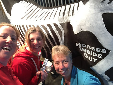 volunteer horses inside out apprenticeship intern work experience equine horse biomechanics