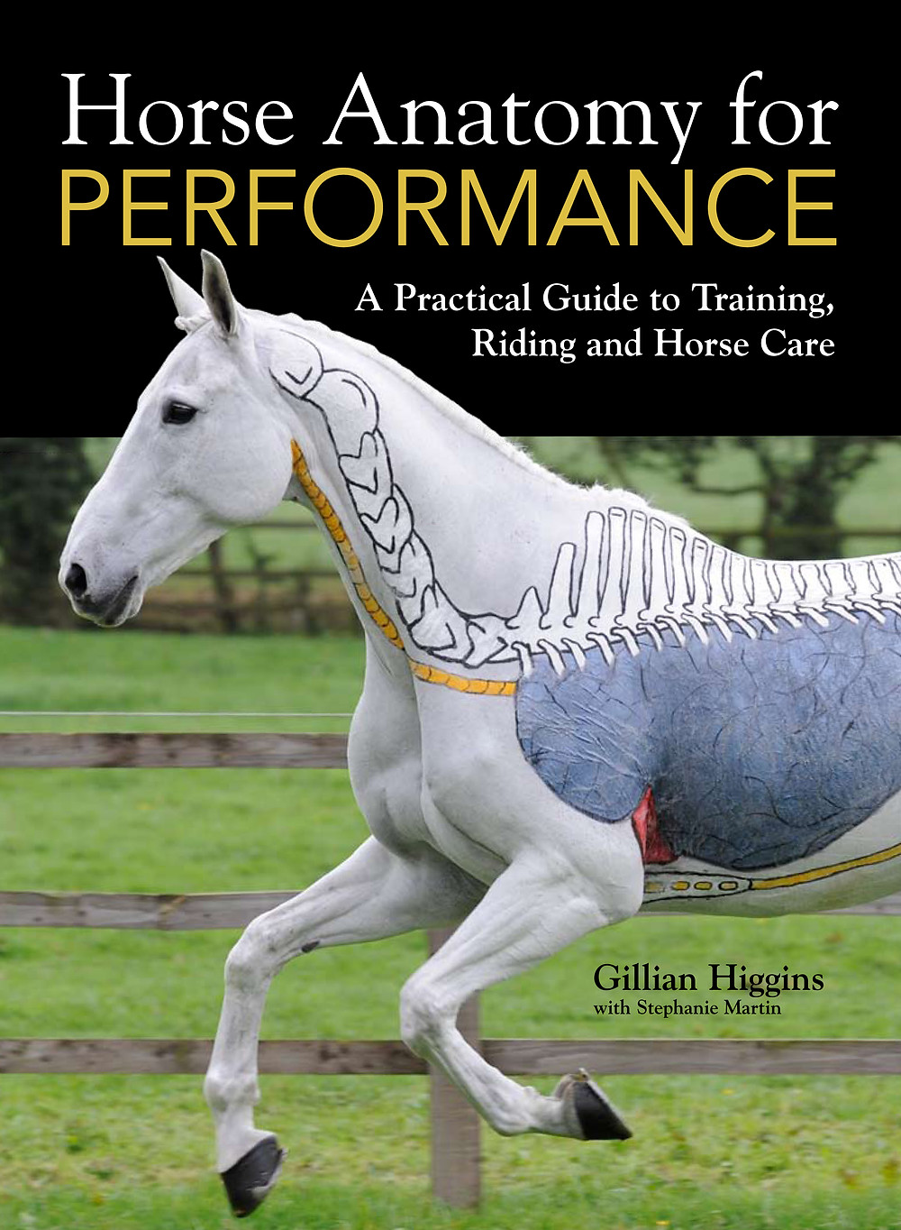 Horse Anatomy for Performance, The integumentary, skeletal , muscular,  digestive, cardiovascular, respiratory, nervous, lymphatic, reproductive, endocrine, urinary systems and connective tissues, tendons, ligaments, fascia. A practical guide to training, riding and horse care